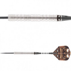 Gary Anderson WC Softtip...