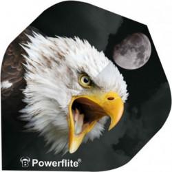 Powerflite Flights - ørn